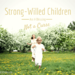 Strong Willed Children Are a Blessing, Not a Curse