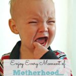 Enjoy Every Moment of Motherhood…I Don't Think So!!