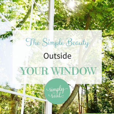The Simple Beauty Outside Your Window